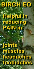 Ormus Minerals Advanced Magnesium & Essential Oils for Pain and Inflammation Relief Birch EO helpful in reducing pain